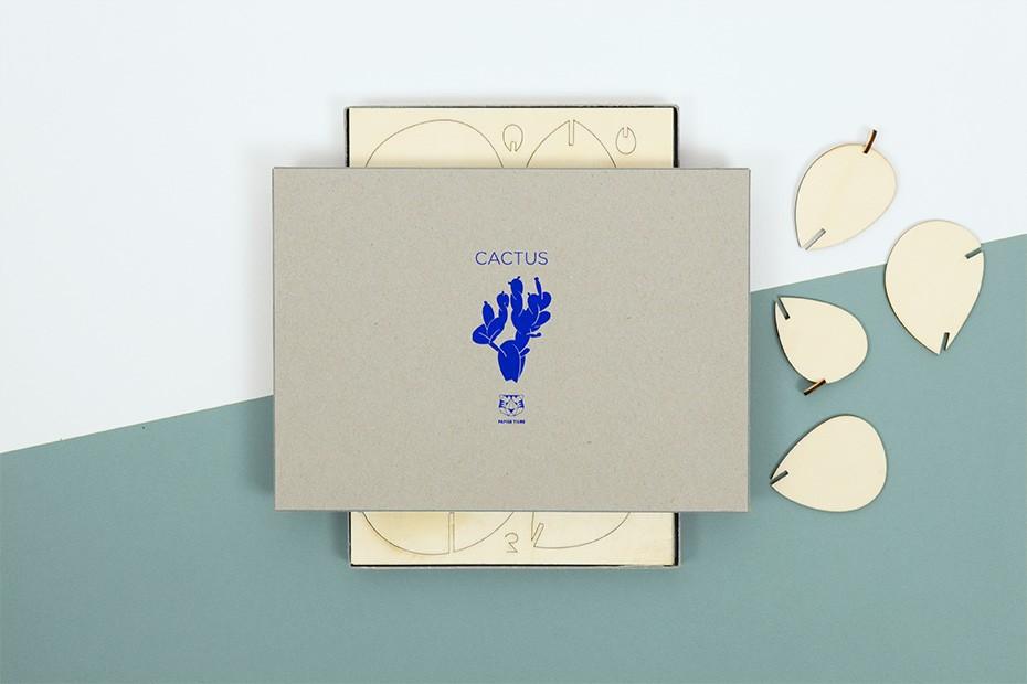 le-cactus-en-bois-papier-tigre-01