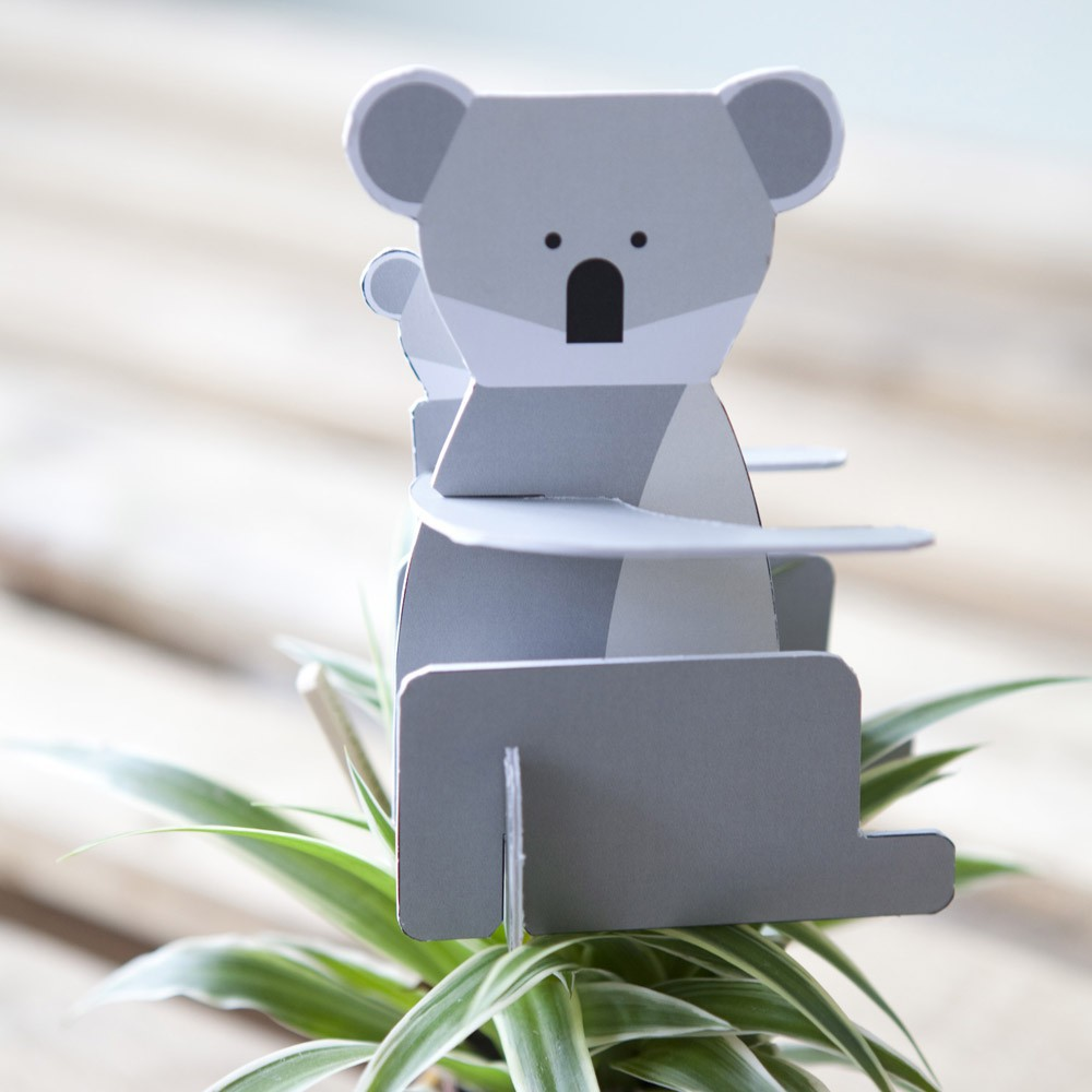 animaux-sauvages-koala-design-carton-studio-roof