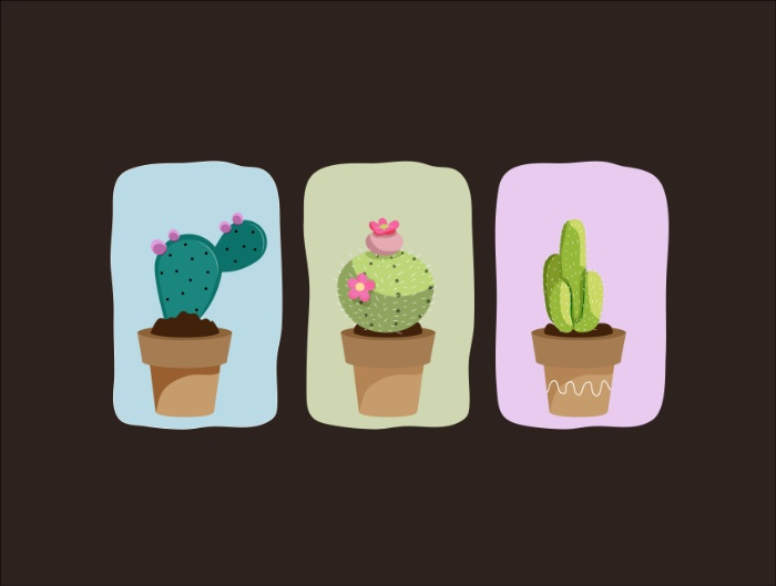 Affiche-cactus-design-07
