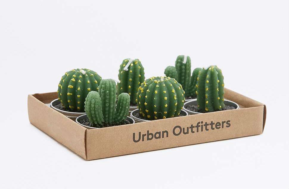 Photophore-Cactus-01