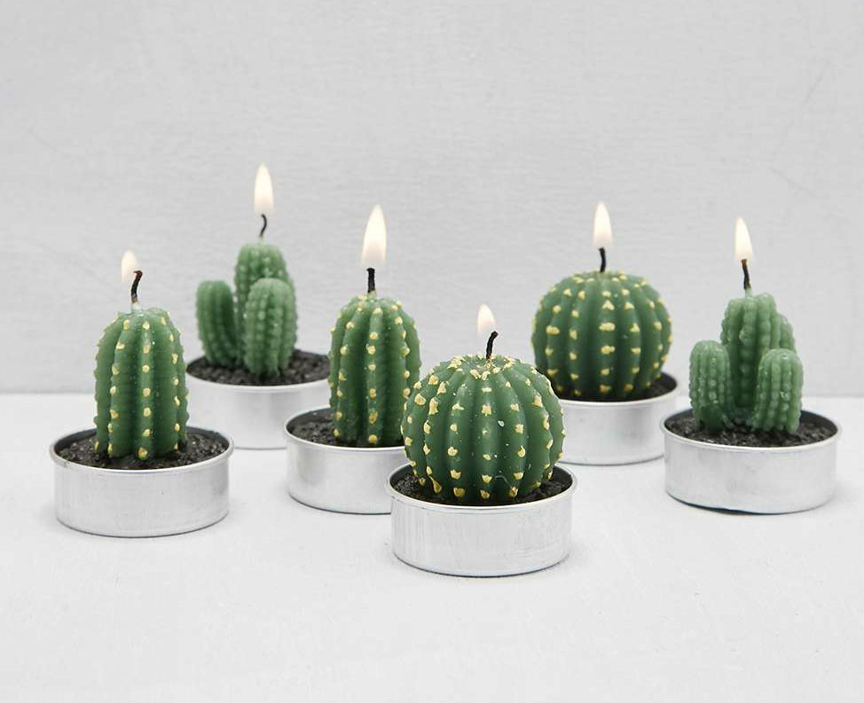 Photophore-Cactus-02