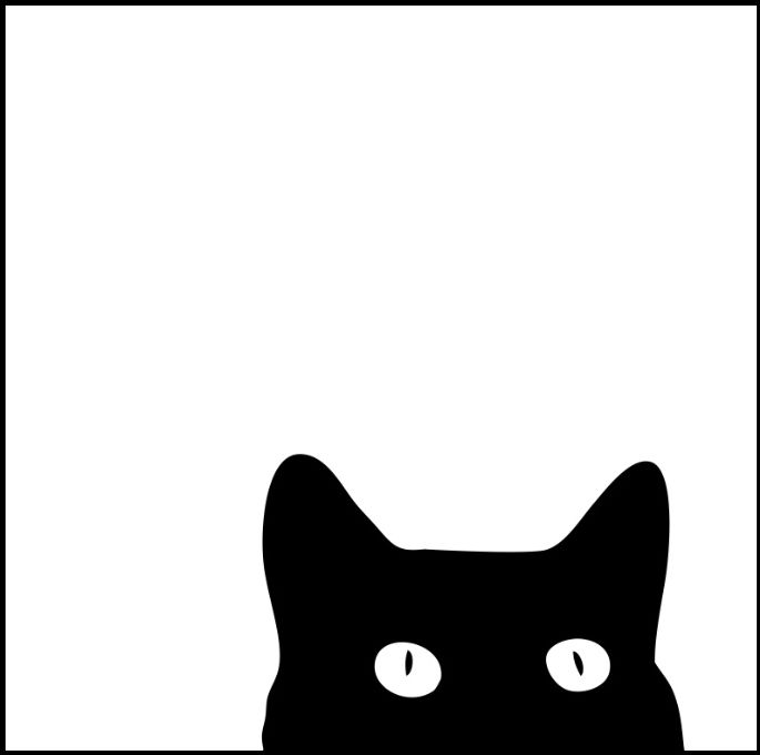 Affiche-black-cat