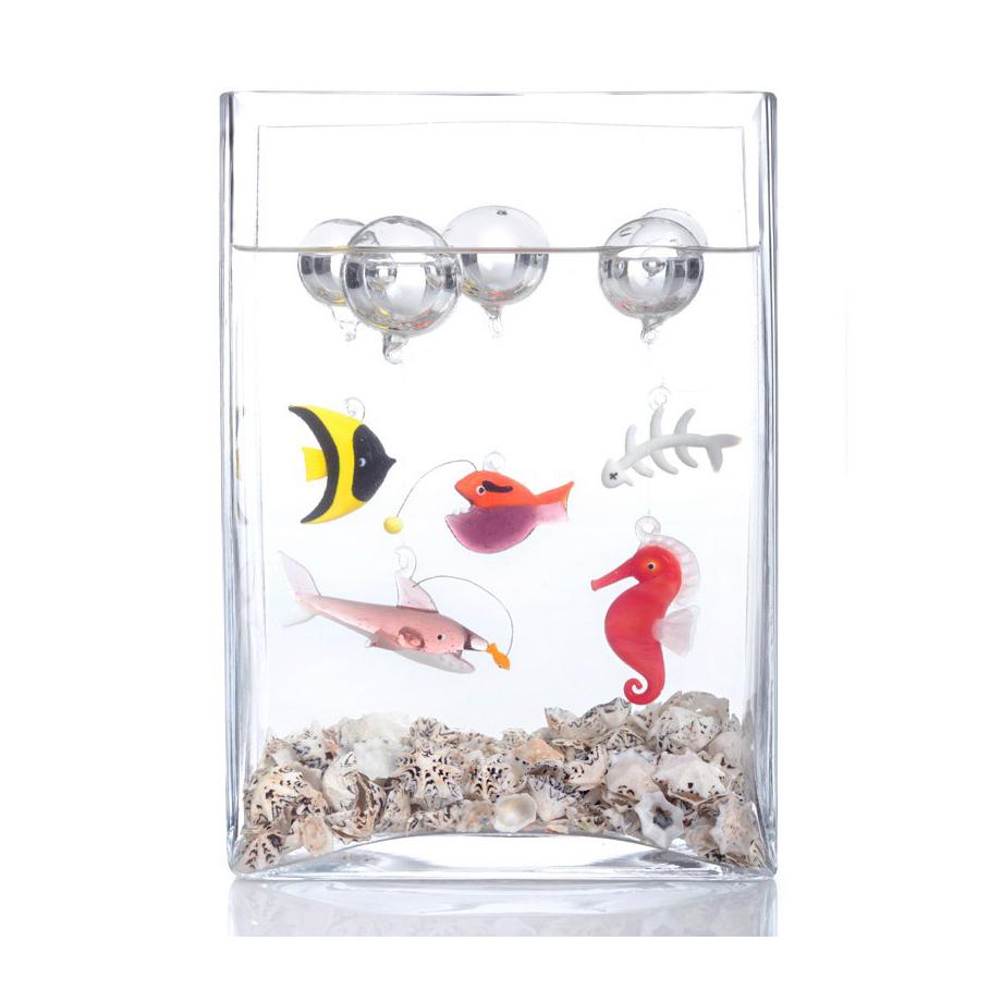 aquarium-verre-design-leonardo-2