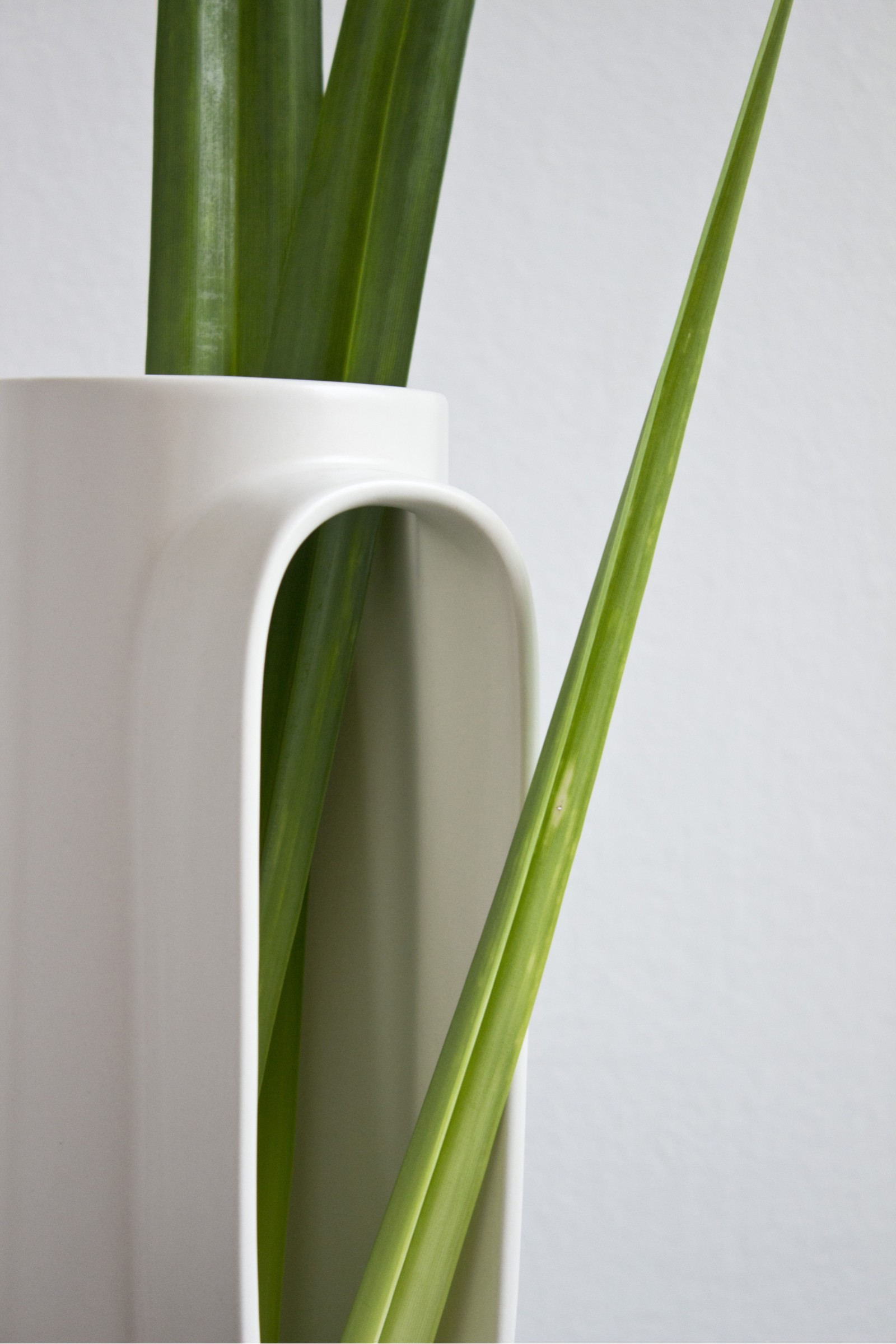 vase-design-kodama-comingb-03